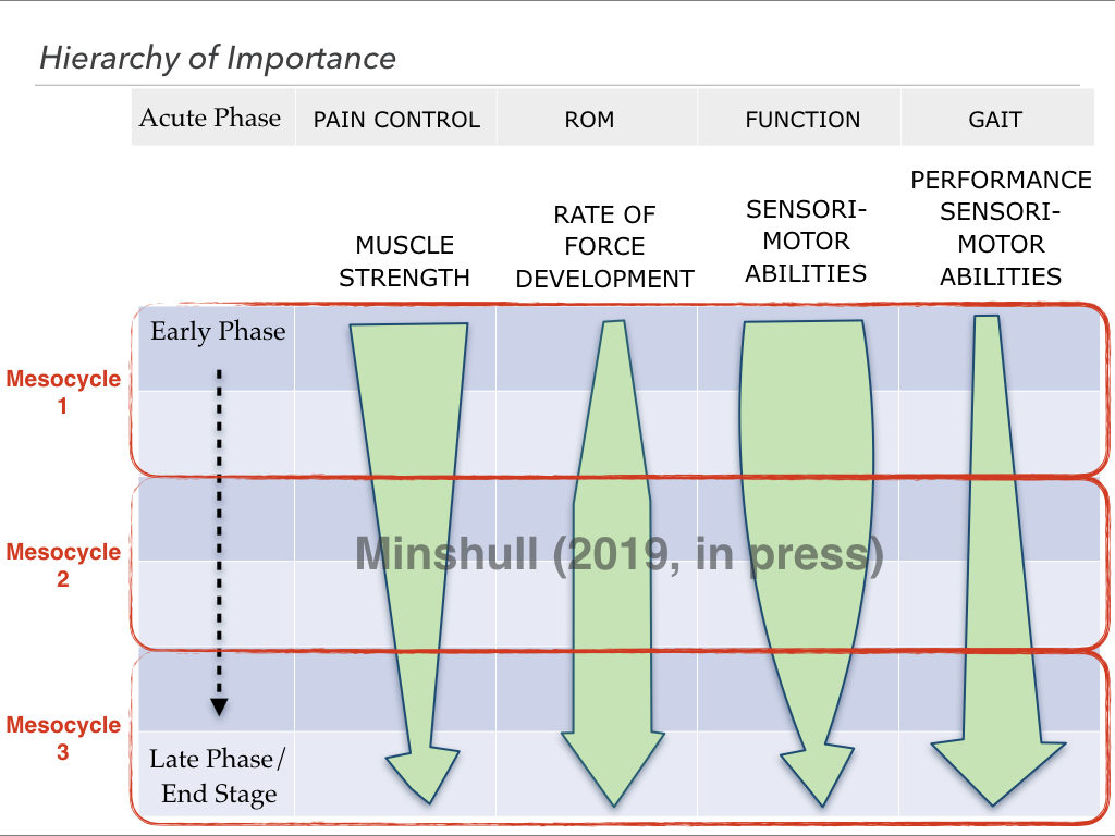 Periodisation in training